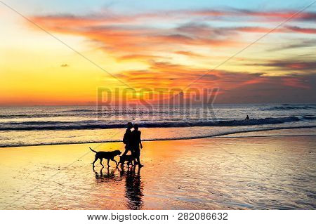 Silhouettes Of Couple With Dogs Walking At Tropical Beach In Scenic Sunset, Bali, Indonesia