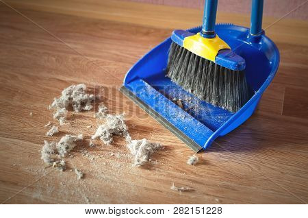 Dust On A House Floor And Floor Brush With Dustpan Background. Home Cleaning Concept.