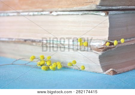 Spring Flowers Of Mimosa Near Stack Of Old Books, Spring Composition. Spring Still Life In Soft Past