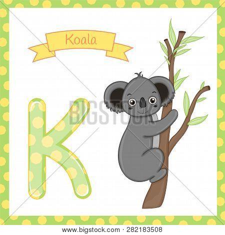 Illustration Of Isolated Animal Alphabet K For Koala On White