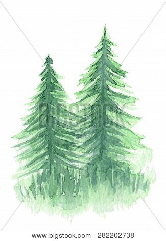 Beautiful Watercolor Background With Two Mystery Light Green Coniferous Trees. Mysterious Fir Or Pin