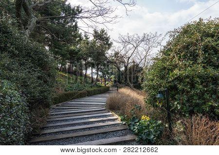 Jungmun Saekdal Beach Trail