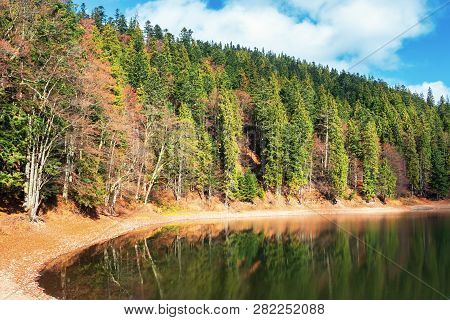 Shore Of The Lake Among Coniferous Forest With Some Beech Trees In Autumn. Beautiful Nature Scenery