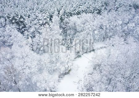 Aerial View Of Winter Beautiful Landscape With Trees Covered With Hoarfrost And Snow. Winter Scenery
