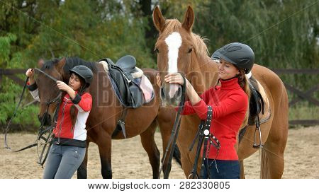 Young Women Preparing Horses For Riding. Beautiful Girl Taking A Care Of A Horse On Farm. Jockey And