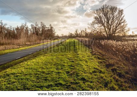 Picturesque Landscape With Long And Curved Country Road And A Tall Bare Tree In Backlit. The Photo W
