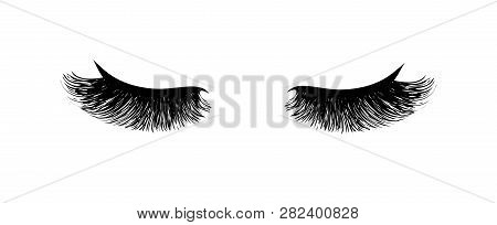 Eyelash Extension. Beautiful Black Long Eyelashes. Closed Eye . False Beauty Cilia. Mascara Natural