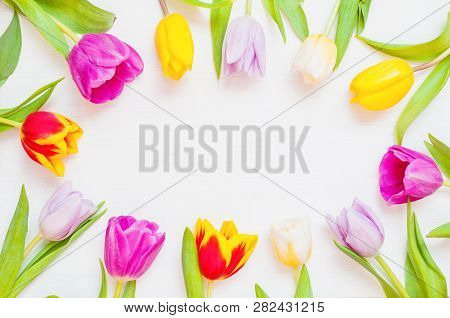 Spring flower background - multicolored spring tulip flowers on the white wooden background. Flat lay, top view, space for text. Spring frame composition made of spring tulip flowers
