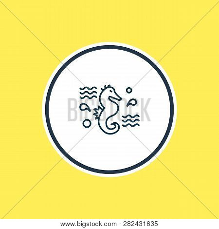 Vector Illustration Of Sea Horse Icon Line. Beautiful Nautical Element Also Can Be Used As Hippocamp