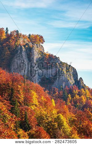 Rocky Cliff In Autumn. Trees In Colorful Foliage. Warm And Sunny Weather. Beautiful Nature Backgroun