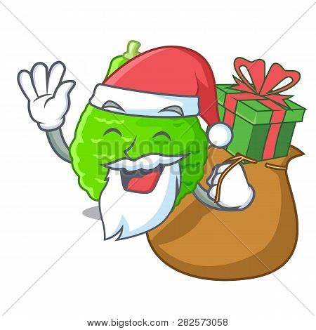 Santa With Gift Lime Kaffir Is Isolated With Cartoons