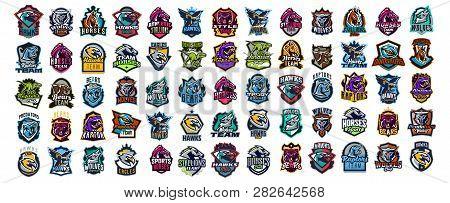 Set Of Animal Emblems. Bear, Dinosaur, Eagle, Leopard, Wolf, Horse, Fox, Lion, Grizzly, Raptor, Hawk