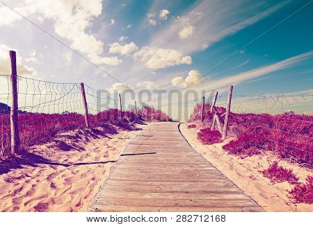 Path Of Wooden Slats Towards The Beach. Vivid Grass And Vegetation. Dreamscape In Coastline Backgrou