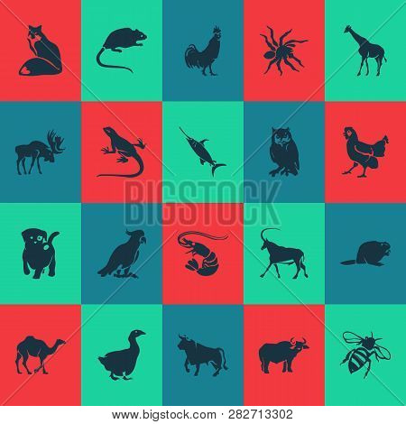 Animal Icons Set With Rooster, Shrimp, Swordfish And Other Parrot Elements. Isolated Vector Illustra