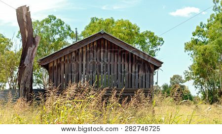 Abandoned Old Timber Slat Hut With A Frontage Of Tall Wild Grass