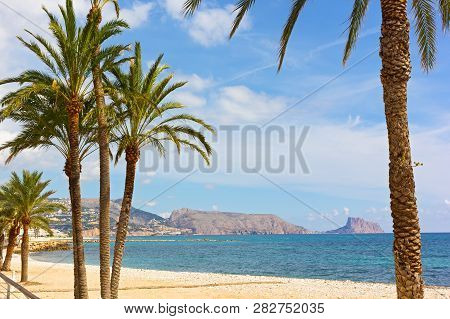 A Sandy Beach With Pal Trees Under Blue Skies In Autumn. Mediterranean Sea Bay Surrounded By Mountai