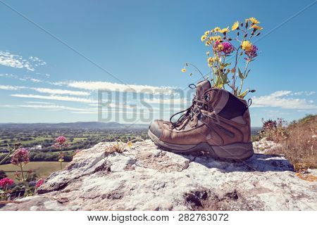 Hiker hiking boots resting with wildflowers on a mountain trail with distant views of countryside in summer sunshine