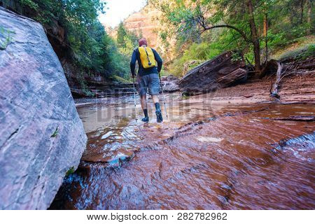 Hike in Zion National Park, man hiking in Zion narrow with Vrgin river in summer season, Zion National park,Utah