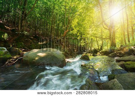 Forest Stream Among The Rocks. Beautiful Summer Scenery On A Sunny Day. Wonderful Nature Background.