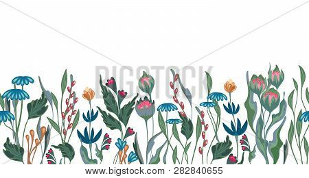 Seamless Vector Floral Border With Hand Drawn Herbs And Flowers. Pattern Endless With Blossom Flower