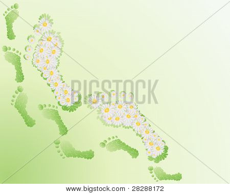 an illustration of footprints made with daisy flowers on a pale green background poster