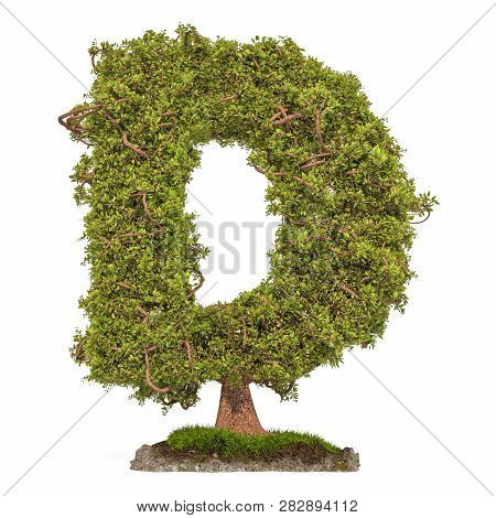 5f7e551be Tree Letter D. Tree In Shaped Of Letter D, 3d Rendering Isolated On White