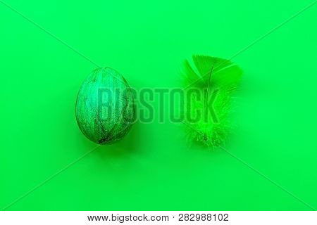Easter Holiday Concept . Creative Style Minimalism. Green Colored Easter Egg And Green Feather Isola