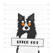 Vector Illustration. Mugshot of a Hard Faced Dog with Orange Round Glasses. Bitch as Female Dog of Black and White Border Collie. poster