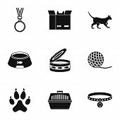 Cat house icons set. Simple set of 9 cat house icons for web isolated on white background poster