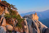 View of stones and rock formations from Ulsanbawi rock peak on sunset with staircase. Seoraksan National Park, South Corea poster