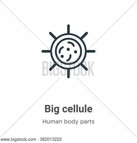 Big cellule icon isolated on white background from human body parts collection. Big cellule icon tre