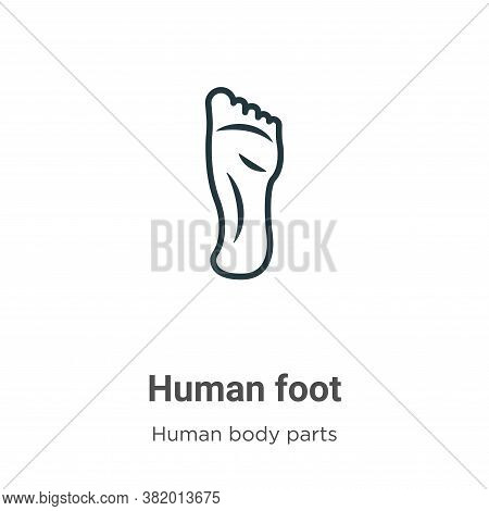 Human foot icon isolated on white background from human body parts collection. Human foot icon trend