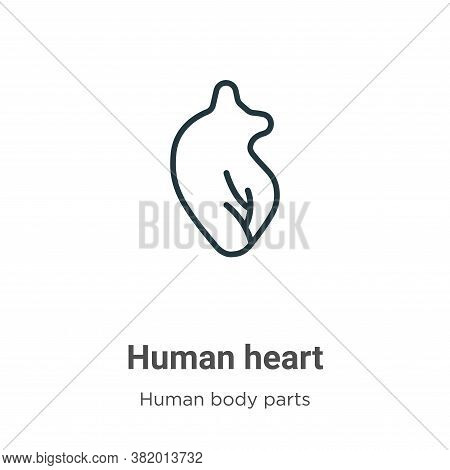 Human heart icon isolated on white background from human body parts collection. Human heart icon tre