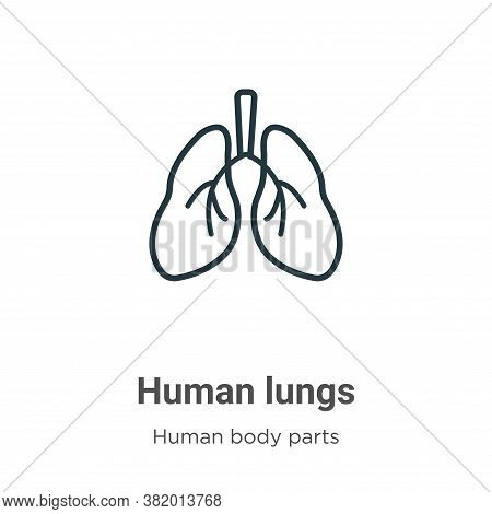 Human lungs icon isolated on white background from human body parts collection. Human lungs icon tre