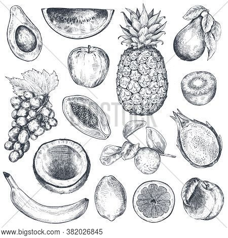 Set Of Hand Drawn Fresh Fruits In Sketch Style. Black And White Vector Collection.