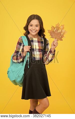 Autumn Is Time For School. Happy Schoolgirl On Yellow Background. Little Kid Smile With Fall Leaves