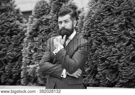 Business Man Bearded Wear Perfect Fashionable Suit. Successful Entrepreneur. Business Life. Man Busi
