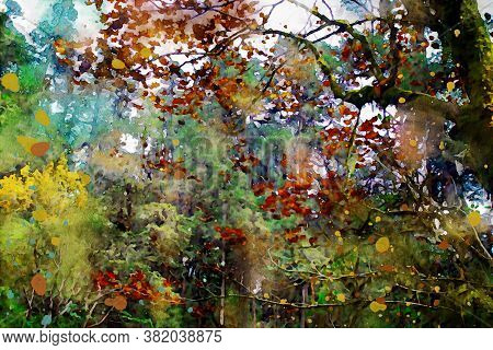 Trees In Autumn With Colorful Leaves, Fall Season Image, Digital Watercolor Painting