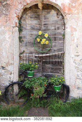 Flowering Bicycle In Front Of An Old Door
