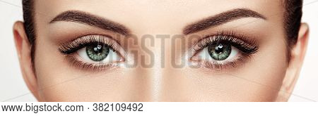 Female Eye With Extreme Long False Eyelashes. Eyelash Extensions. Makeup, Cosmetics, Beauty. Close U