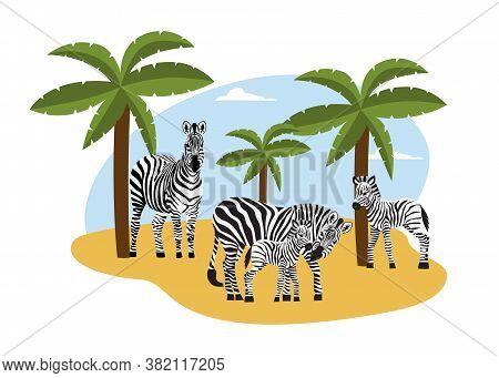 Herd Of Zebras On African Landscape Backdrop Flat Vector Illustration Isolated.