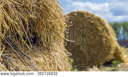 Haystack Close Up. Hay Bale Against A Blue Sky. Harvesting Hay, Dry Grass