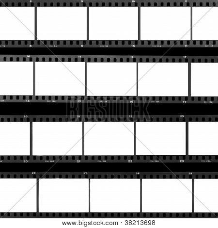 Contact Sheet Blank Film Frames
