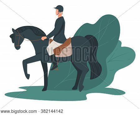 Jockey Rising Horse, Racing Hobby, Equine Leisure Vector