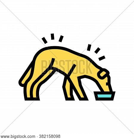 Dog Eating Food Color Icon Vector. Dog Eating Food Sign. Isolated Symbol Illustration