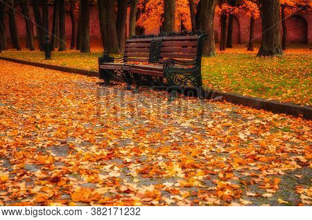 Fall landscape. Fall in the city park. City fall park bench in fall. Fall park in picturesque tones. Diffusion filter applied. Fall park in October, fall background. Fall nature, colorful fall landscape