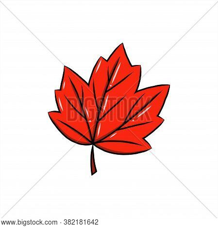 Red Leaf Vector Illustration, Canadian Vector Symbol, Red Maple Leaf, Canada Sign, Red Canada Maple