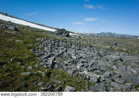 Hiking in Swedish Lapland. Man traveler trekking alone Nordkalottruta or Arctic Trail in northern Sweden. Arctic nature of Scandinavia in warm summer sunny day with blue sky, rocks and snow