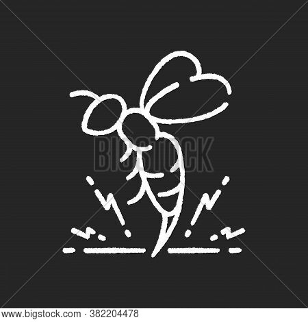 Bee Venom Chalk White Icon On Black Background. Honeybee Attack, Flying Insect Injecting Poison. Bee