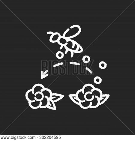 Pollination Chalk White Icon On Black Background. Working Bee Collecting Nectar, Carrying Wildflower